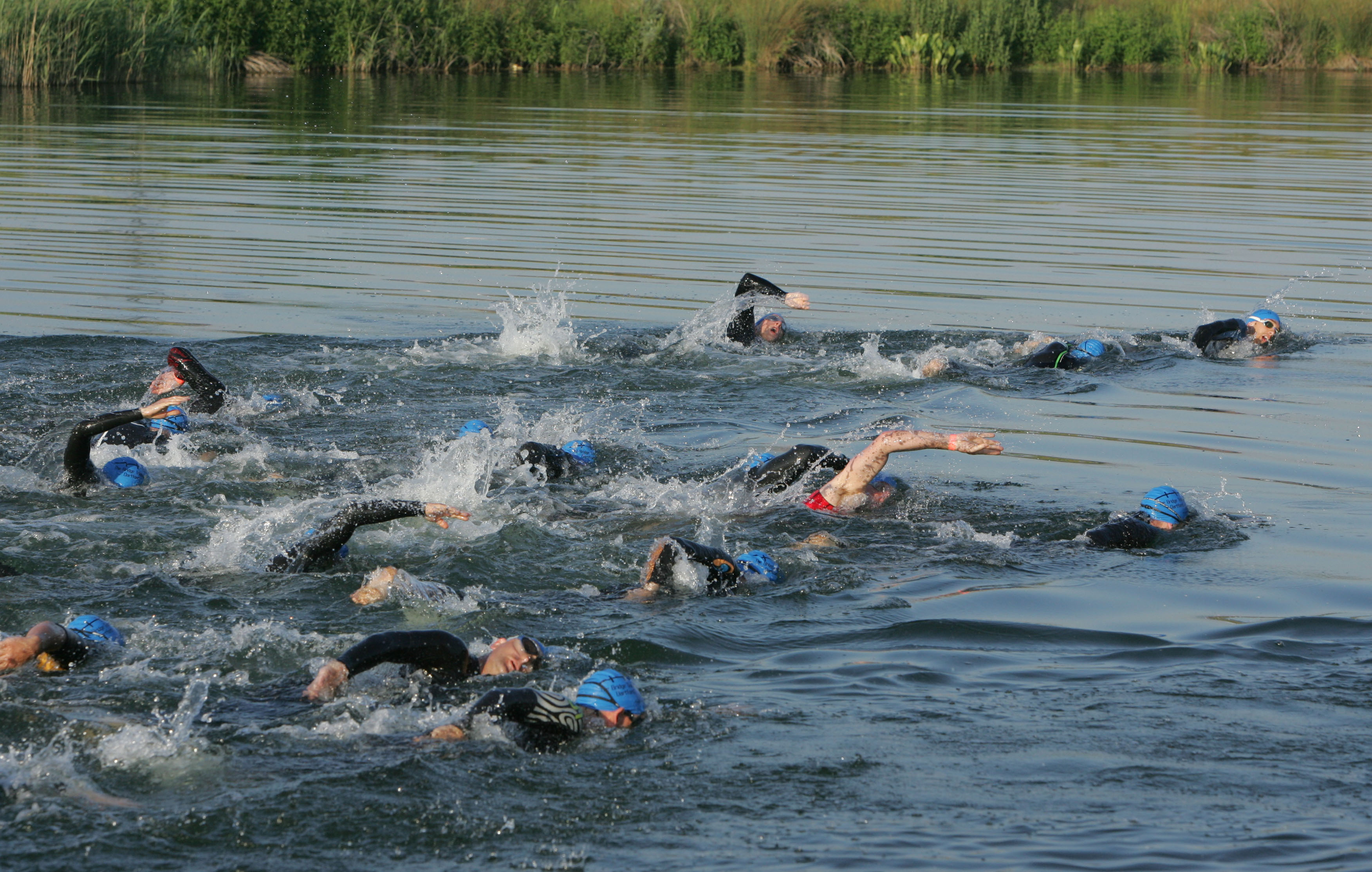Image result for open water swimming in dartford